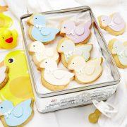 duck-box-1024×681-21